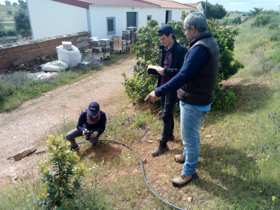 Visitas às plantações dos agricultores do Baixo Alentejo aderentes ao projeto