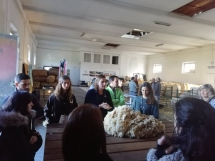 evora-acolhe-workshop-de-las-100-merino