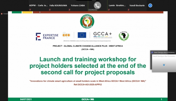 Oficina de lançamento e capacitação para líderes de projetos   Aliança Global contra as mudanças climáticas