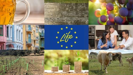 Cimeira do Clima de Madrid: Projeto LIFE Montado-Adapt, projeto promovido pela ADPM Mértola, é um dos 10 destacados pelo Programa LIFE
