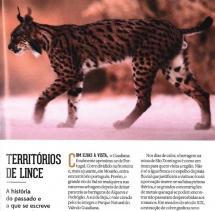 projeto-por-terras-do-lince-iberico-em-destaque-na-national-
