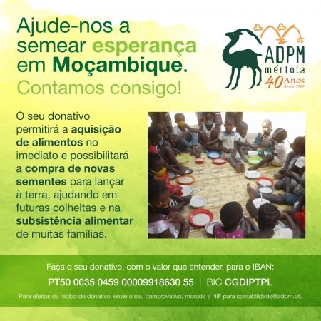Insegurança alimentar em Moçambique