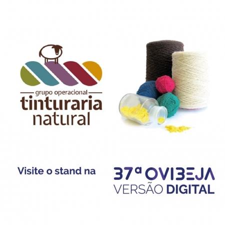 Projeto Tinturaria Natural estará presente na Ovibeja