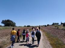 projeto-uaditurs-ii-promoveu-caminhadas-em-serpa