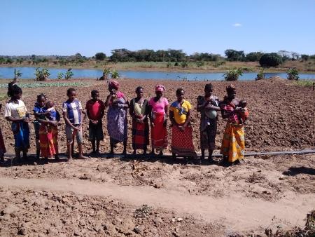 Campo de Multiplicação de Estacas e Sementes contribuem para a segurança alimentar em Monapo - Moçambique