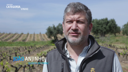 QUALIFICA4AGRO: Conheça os vencedores do Prémio para Melhor PME Agroalimentar em Marketing Digital